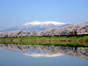 宮城,仙台,石巻
