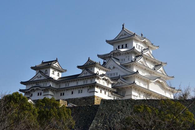 兵庫,神戸,姫路