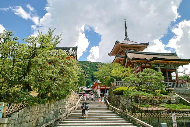 京都,宇治,亀岡